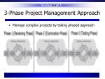 3 phase project management approach
