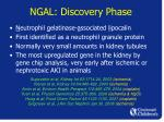 ngal discovery phase