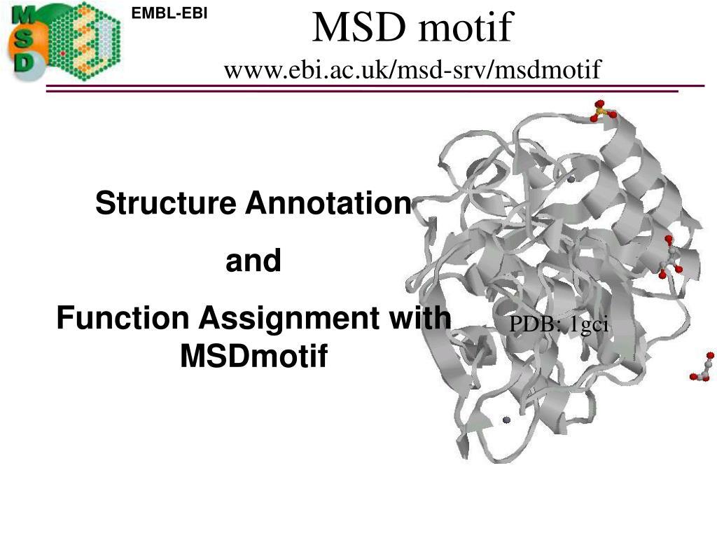 msd motif www ebi ac uk msd srv msdmotif l.