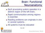 brain functional neuroanatomy