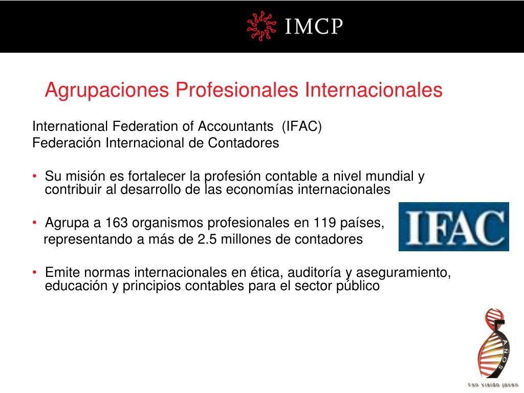 Agrupaciones Profesionales Internacionales