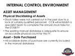 internal control environment4