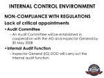 internal control environment5