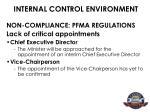internal control environment6