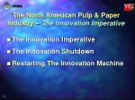 the north american pulp paper industry the innovation imperative