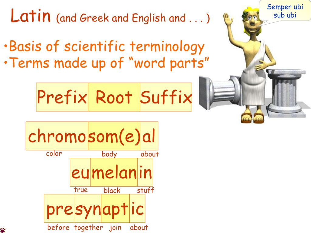 latin and greek and english and l.