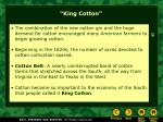 king cotton31