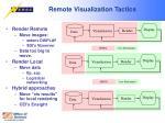 remote visualization tactics