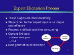 expert elicitation process