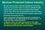 mexican protected culture industry26