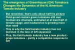 the emergence of greenhouse gh tomatoes changes the dynamics of the n american tomato industry