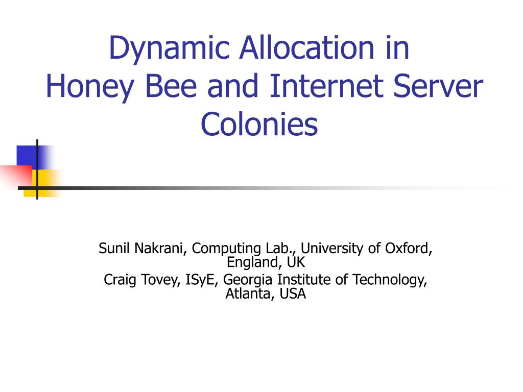 dynamic allocation in honey bee and internet server colonies l.