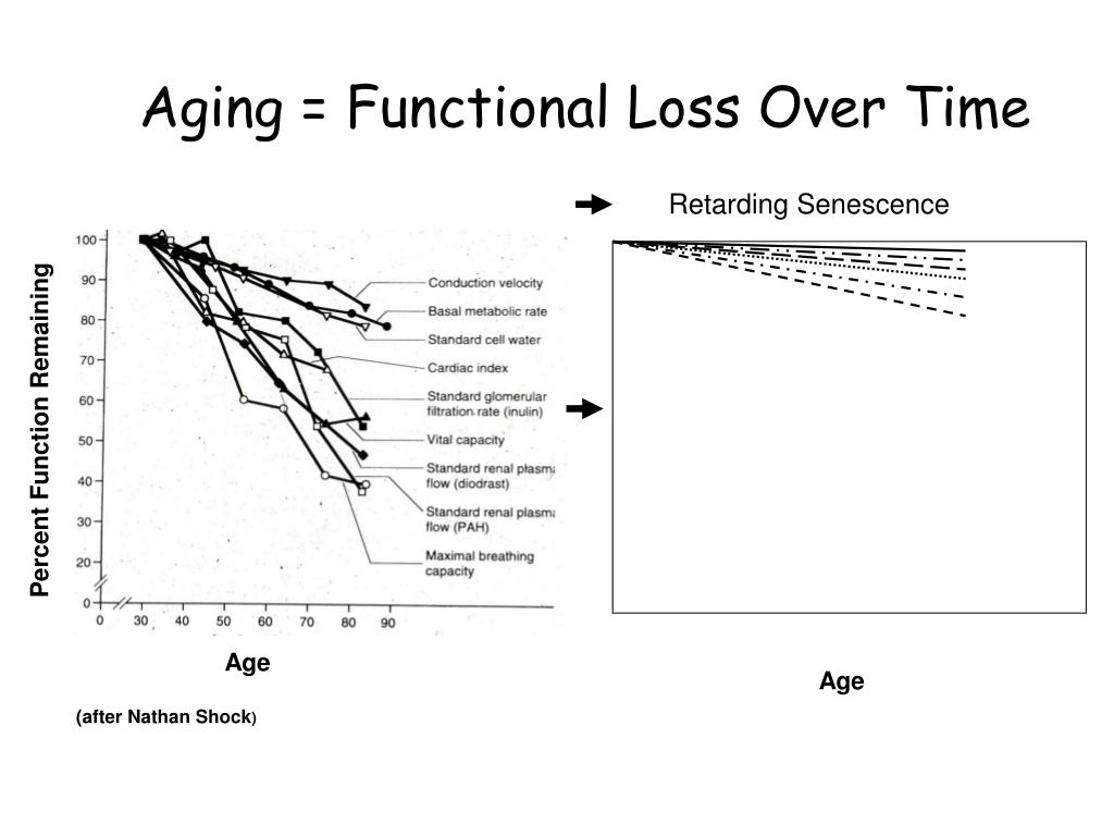 Aging = Functional Loss Over Time