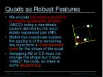 quads as robust features