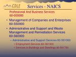professional and business services 60 000000101