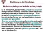 flexionsmorphologie und lexikalische morphologie