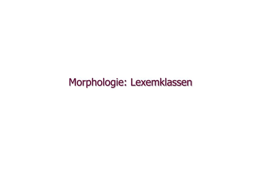 morphologie lexemklassen l.