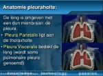 anatomie pleuraholte