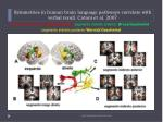 symmetries in human brain language pathways correlate with verbal recall catani et al 200720