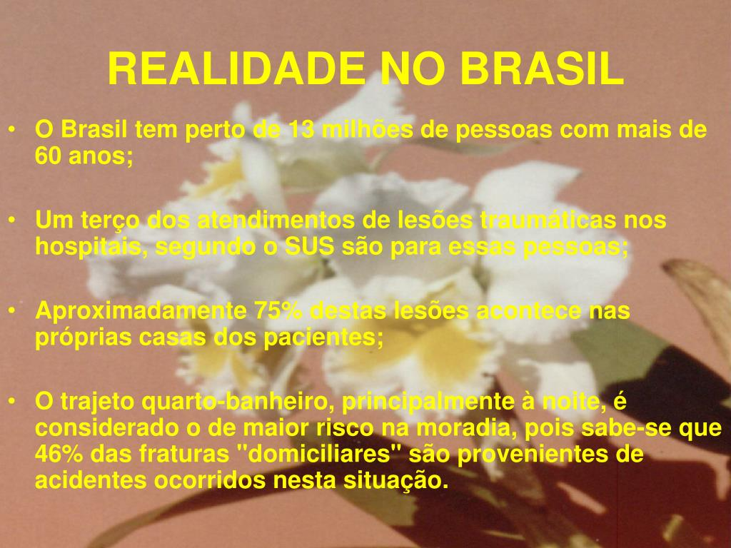 REALIDADE NO BRASIL