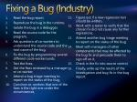 fixing a bug industry