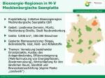 bioenergie regionen in m v mecklenburgische seenplatte