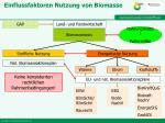 einflussfaktoren nutzung von biomasse