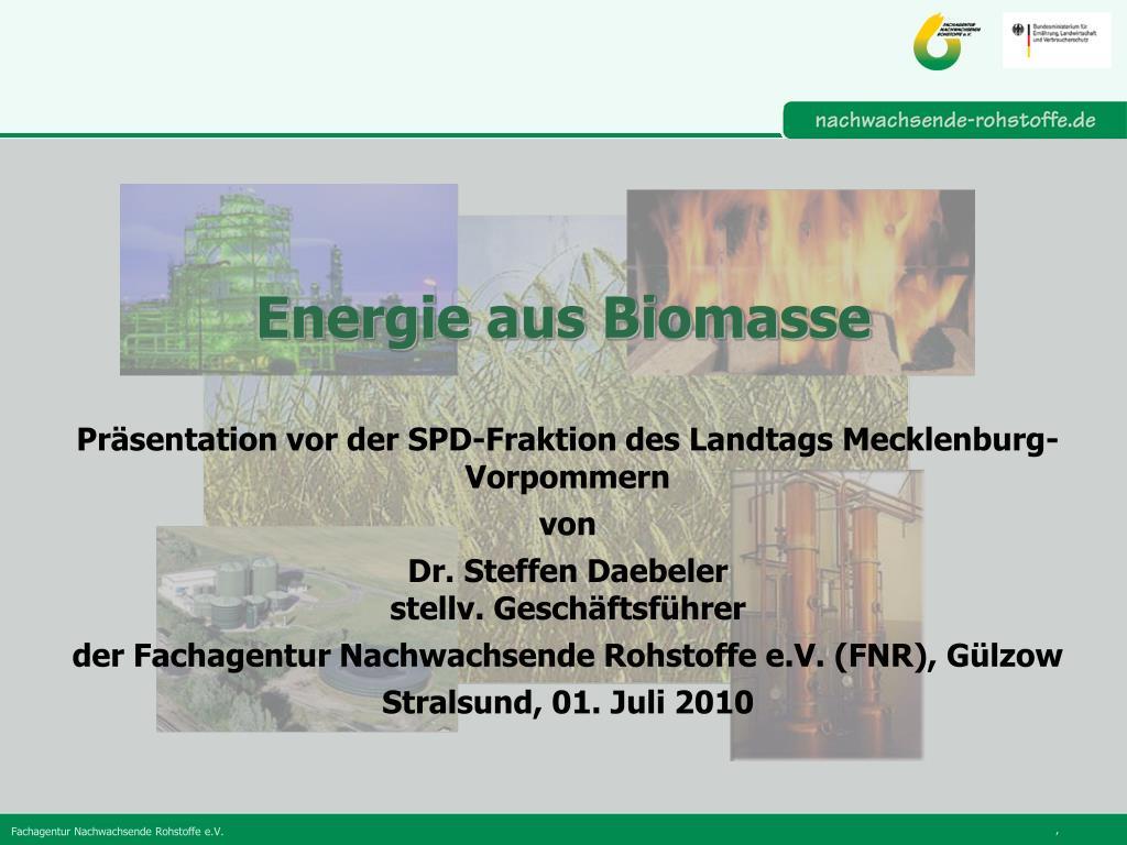 energie aus biomasse l.