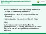 zwischenfazit bioenergie in mecklenburg vorpommern