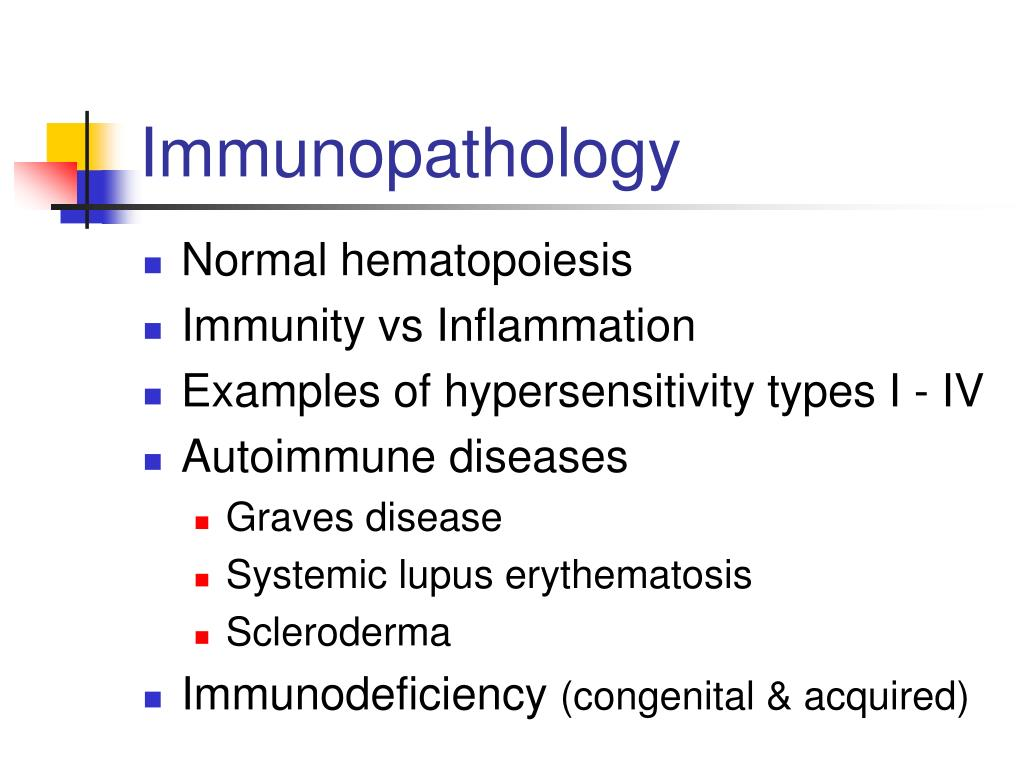 immunopathology l.