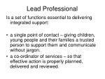 lead professional