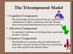 the tricomponent model