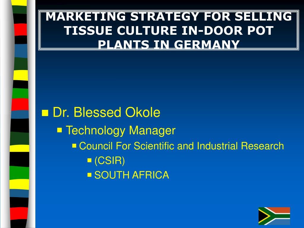 marketing strategy for selling tissue culture in door pot plants in germany l.