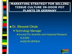 marketing strategy for selling tissue culture in door pot plants in germany