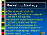 marketing strategy17