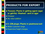 products for export