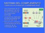 sistema del complemento complejo de ataque de la membrana mac