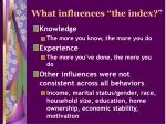 what influences the index