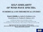 self similarity of wind wave spectra numerical and theoretical studies