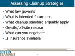 assessing cleanup strategies