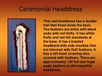 ceremonial headdress