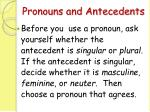 pronouns and antecedents33