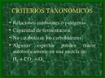criterios taxonomicos5