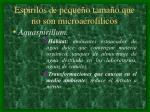 espirilos de peque o tama o que no son microaerofilicos16