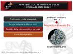 caracter sticas fenot picas de las c lulas cancerosas17