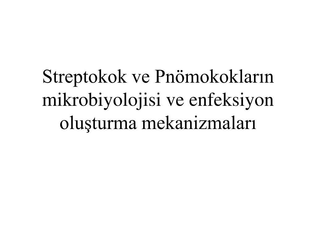 streptokok ve pn mokoklar n mikrobiyolojisi ve enfeksiyon olu turma mekanizmalar l.