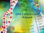 dna extraction and analysis