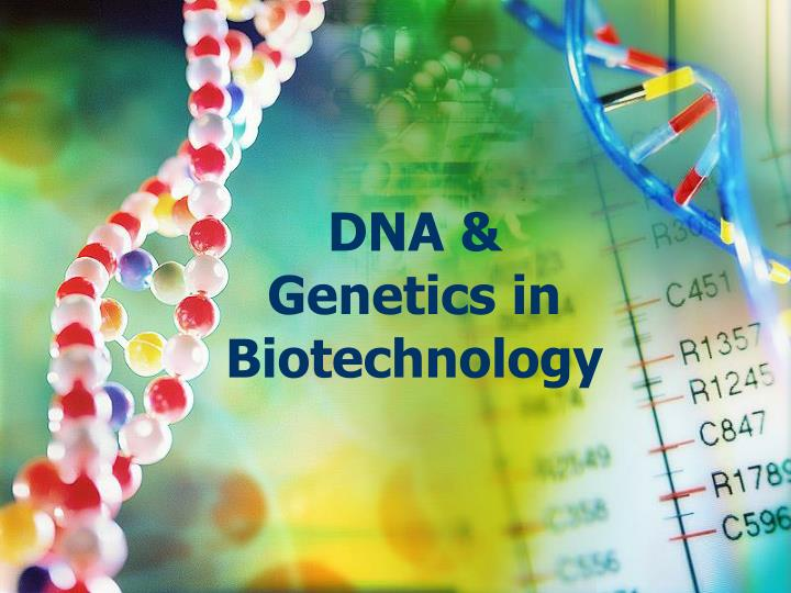 dna genetics in biotechnology n.