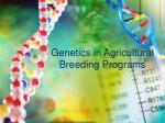 genetics in agricultural breeding programs