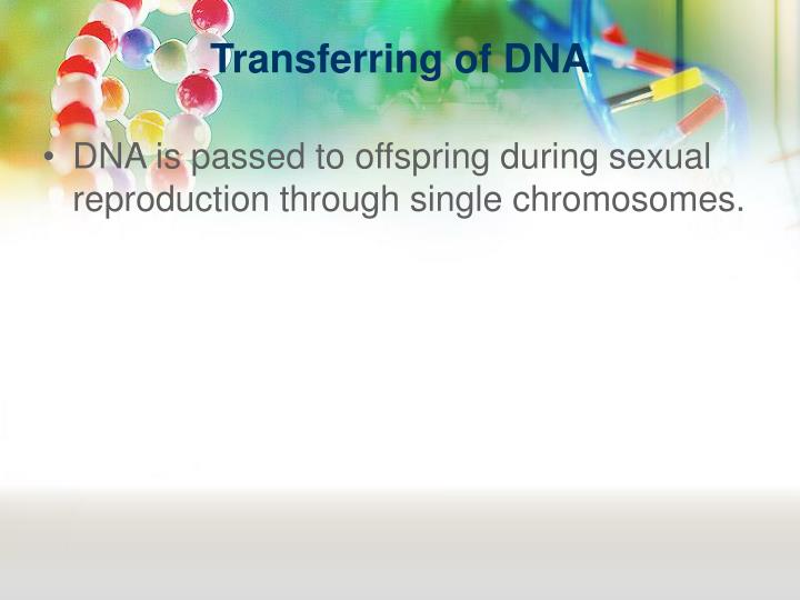 Transferring of DNA